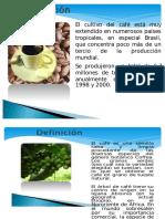Expocicion Del Cafe