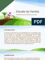 Estudio de Familia.pptx