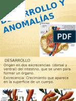 ANOMALIAS PANCREATICAS