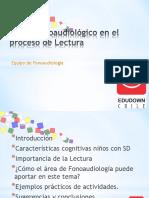 Apoyo Fonoaudiológico en El Proceso Lector CHARLA COLEGIOS 27 de MAYO EDUDOWN