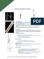 PARARRAYOS_FRANKLIN.pdf