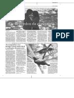 Jornal Do Brasil-Rocha