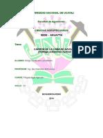 Informe de  Carbon de Caña de azúcar