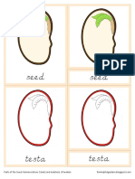Parts of the Seed Nomenclature Cards