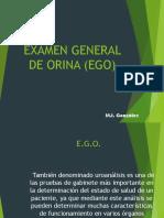 Interp Uroanalisis EGO