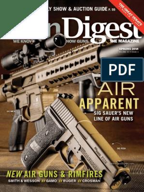 Gun D-S 2016 | Cartridge (Firearms) | Handgun