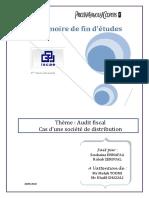 Audit Fiscal Cas d Une Societe de Distribution