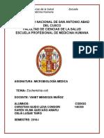 Laboratorio de Microbiologia-escherichia Coli