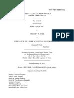 Pure Earth Inc v. Gregory Call, 3rd Cir. (2013)