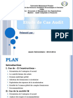 Audit Cas Pratique