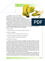platano_tcm7-315357.pdf