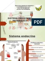 Sistema Endocrino Liliana