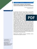 modelo.pdf