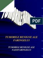 4.-TUMORILE-FARINGELUI