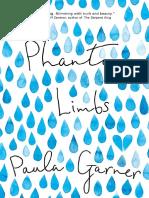 Phantom Limbs by Paula Garner Chapter Sampler