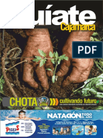 Informe Guiate Cajamarca 08 08 2016
