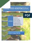 FVH.pdf