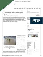 La totipotencia en cultivos de tejido vegetal _ La guía de Biología.pdf