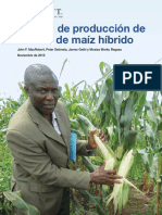 Producción de semilla híbrida de maíz