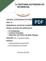 TRABAJO DE MSC CONCEPCION.docx