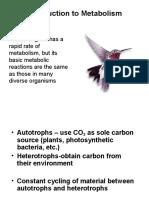 Metabolism Introduction