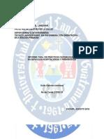 Caraturla Informe Final