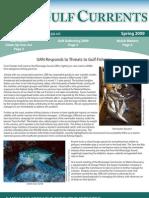 Spring 2009 Gulf Currents Newsletter