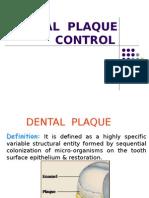 Chemical Plaque Control Perio