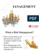 Riskmanagement 130215051514 Phpapp01 (1)