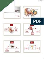 Fundamentos de Fono 2 2016.pdf