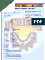 RELIEVE PERUANO  ANDINO - AMAZÓNICO