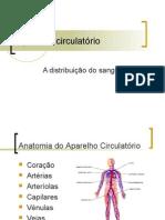Aparelho circulatorio
