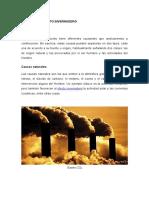 CAUSAS Y CONSECUENCIAS DEL EFECTO INVERNADERO.docx