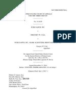 Pure Earth Inc v. Gregory Call, 3rd Cir. (2015)