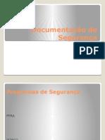 7- Documentação de Segurança