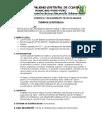 Terminos de Referencia Huancasaya Supervision