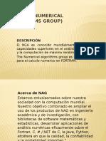 NGA (The Numerical Algorithms Group).pptx
