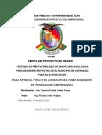 Perfil de Proyecto de Grado Zpsf 20 de Julio
