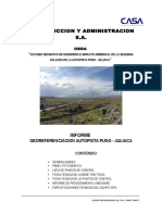 01. Informe Para Georef Final