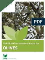 106150243-Olive-Booklet.pdf