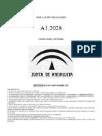 Simulación de examen A12028 2ªsem _sept _11.pdf