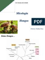 Hongos I.pdf
