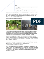 Los Misquitos de Honduras