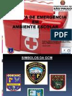 Curso de Primeiros Socorros - Gcm-sme