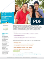 Family Bridges Flyer in English and Spanish