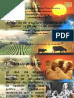 Influencia de la cultura occidental en los proyectos de desarrollo.