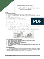 18940970-Sistem-Reproduksi-Manusia-doc.pdf