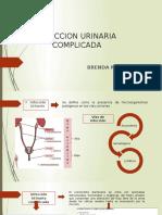 INFECCION URINARIA COMPLICADA
