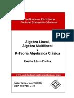 Algebra Lineal y Multilineal