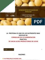 Dr Carlos Campabadal Nutrición Proteica